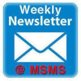 newsletter-icon1211111
